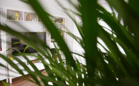 Mieszkanie w stylu botanicznym