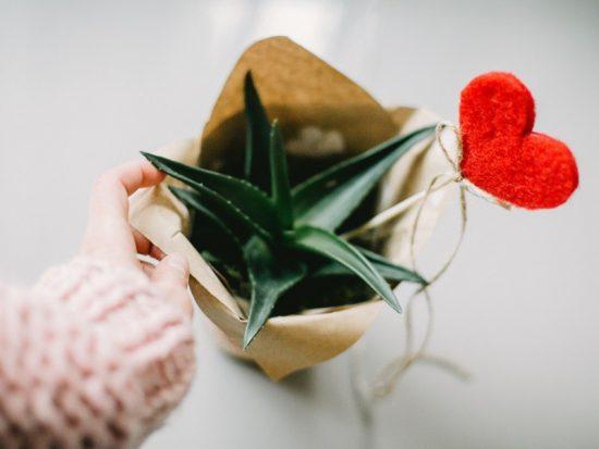 Walentynki – święto pretekstu